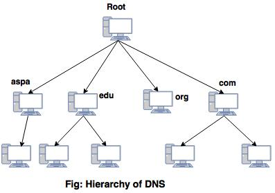 Domain name system in computer network hierarchy dsn ccuart Choice Image