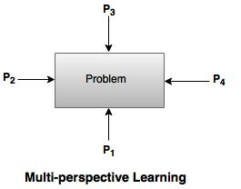 multi perspective learning