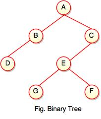 Binary Tree in Data Structure