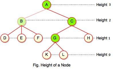 height of node