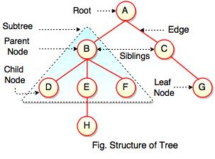 structure of tree